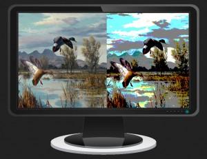 widescreen-monitor-viewing
