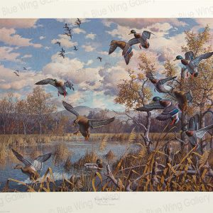 Autumn-Pond - Mallards By Harry Curieux Adamson