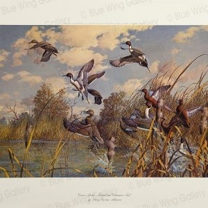 Corner Pocket Pintail and Cinamon-Teal By Harry Curieux Adamson