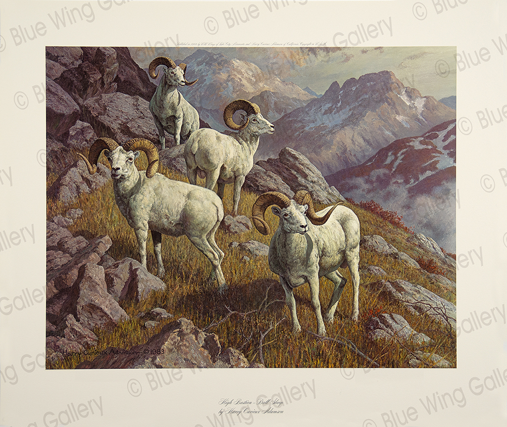 High Bastion - Dall-Sheep By Harry Curieux Adamson