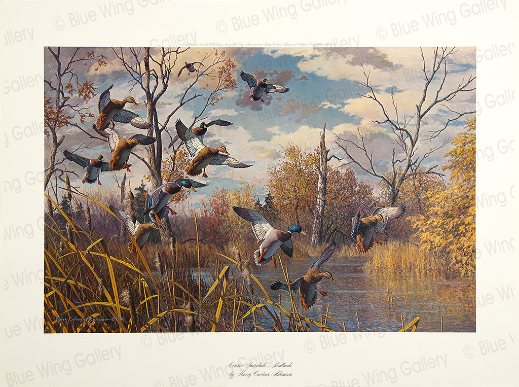 October Interlude -Mallards By Harry Curieux Adamson