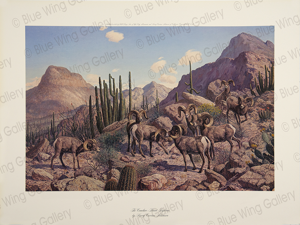 The Conclave - Desert Bighorns By Harry Curieux Adamson