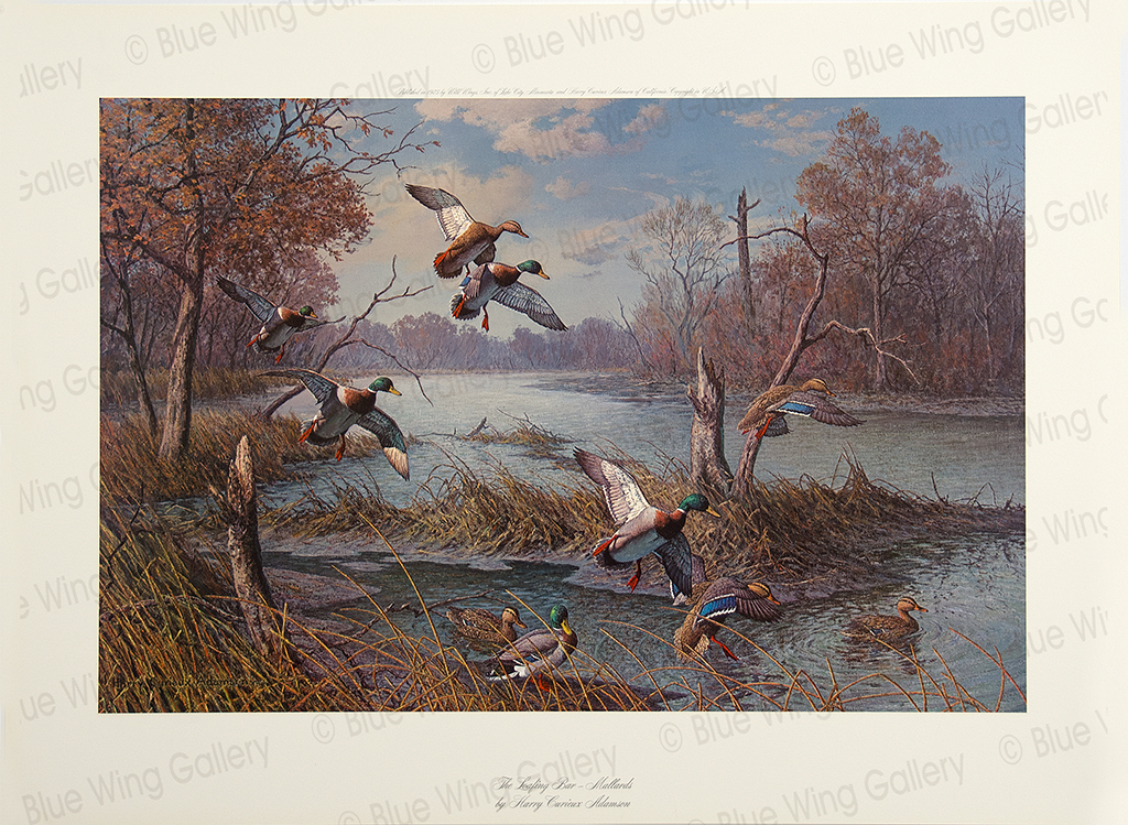 The Loafing Bar - Mallards By Harry Curieux Adamson
