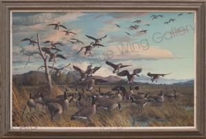 Harry-Adamson-Canada-Geese